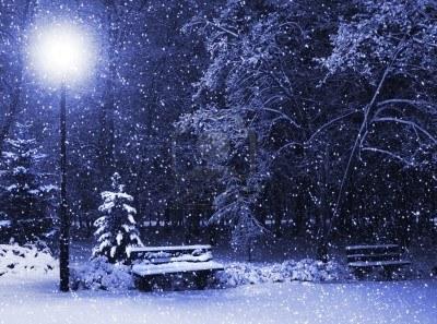 8294097-vista-della-panchina-contro-albero-di-natale-e-lanterne-splende-attraverso-nevica-tonalita-blu-notte