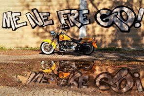 Harley: un mito che appassiona e unisce