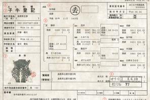 Hida Wagyu: la carne più costosa al mondo, viaggia dalle Alpi Giapponesi con il passaporto