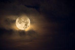 Saggia Luna
