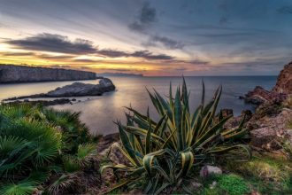 See Sicily